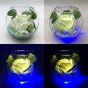 Светодиодные цветы LED Secret, светильник-ночник, белая роза, синяя подсветка, USB, 220V