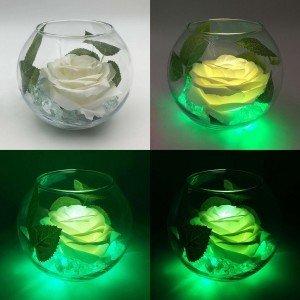 Ночник Светодиодные цветы LED Secret, белая роза с зелёной подсветкой вазы