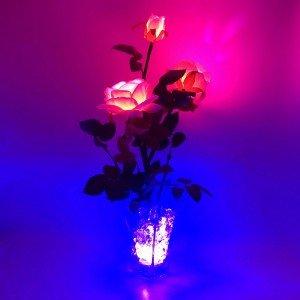 Светильник-цветы LED Nova (розовые розы, синяя подсветка), USB
