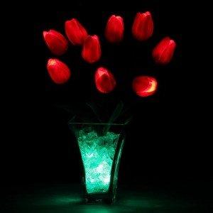 Светильник Светодиодные цветы LED Joy, красные тюльпаны с зелёной подсветкой вазы