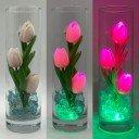 Ночник Светодиодные цветы LED Florarium, розовые тюльпаны с зелёной подсветкой вазы