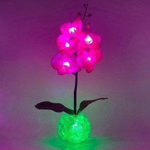 Светильник-ночник Светодиодные цветы LED Provocation, малиновые орхидеи с зелёной подсветкой вазы