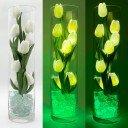 Светодиодные цветы LED Spirit, светильник-ночник, белые тюльпаны + зелёная подсветка, USB, 220V