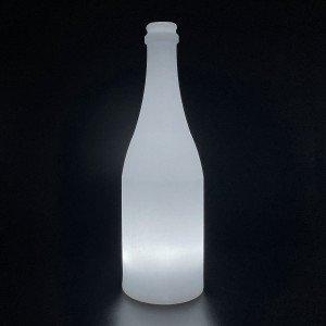 Садовый уличный светильник Бутылка LED BOTTLE c одноцветной подсветкой IP65 220V — Купить в интернет-магазине LED Forms