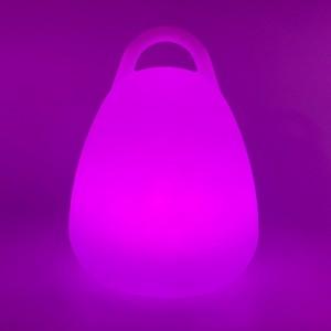 Садовый уличный светильник Сумка LED BAG c разноцветной RGB подсветкой и пультом ДУ IP65 220V — Купить в интернет-магазине LED F