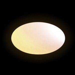 Световая фигура LED Oval (Овал), светодиодная, одноцветная (тёплый белый), IP65, 220V