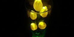 Светящиеся LED цветы для прекрасных дам!