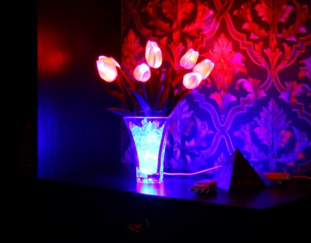 Светящиеся цветы (LED светильники и ночники - тюльпаны, розы, орхидеи)